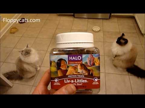 ragdoll-cats-review-salmon-halo-liv-a-littles-freeze-dried-cat-treats-ねこ-ラグドール-floppycats