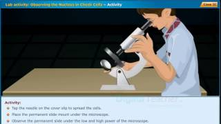 DIGITAL TEACHER ECONTENT Class IX Biology Lab activity Observing the Nucleus in Cheek Cells