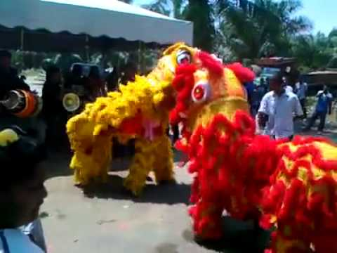 Epic Lion Dance + Indian tune Mashup