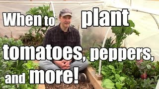 When to Start Tomatoes & Peppers and 5 Crops to Start Outside B4 the Last Frost (3/12 - Zone 5)