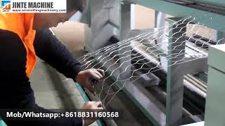 CNC straight and reverse twisted hexagonal wire netting machine for Gabion wire mesh