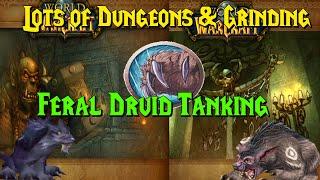 WoW Classic - Feral Druid Chilling, Tanking Scholo \u0026 LBRS \u0026 More!