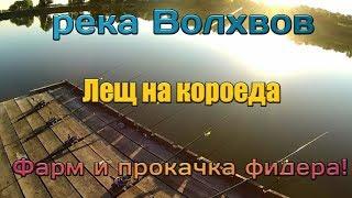 Русская Рыбалка 4 река Волхвов лещ! Фарм на фидеры.