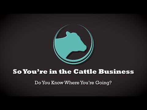 So You're in the Cattle Business