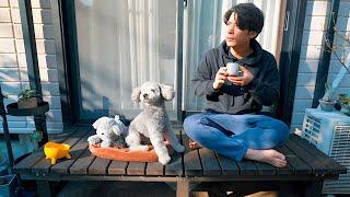 🐶【DIY】愛犬とくつろげるウッドデッキを作ったらおじいさんの気分を味わえましたw【トイプードル】