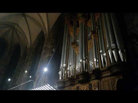 St. Stephen's Cathedral - Vienna - Pipe Organ