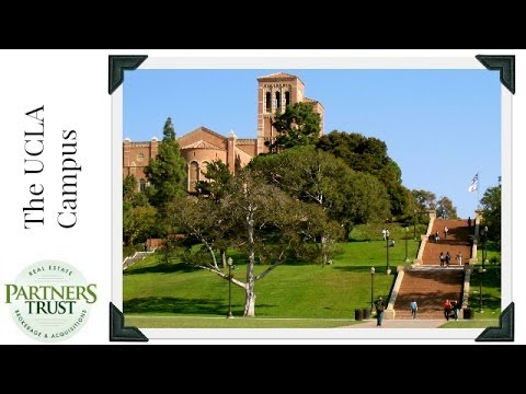 Los Angeles Lifestyle: The UCLA Campus | Things to Do in LA | Partners Trust