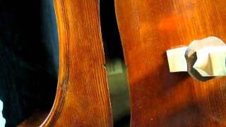 05 11 11 shen 200i 004 avi 5 string upright bass by shen at fmi bass shop