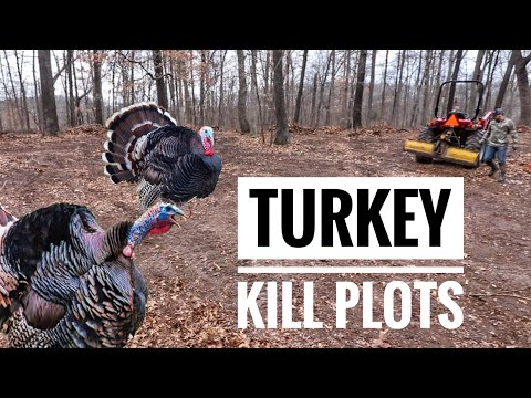 Food Plots For Turkey Hunting! - S9 #6