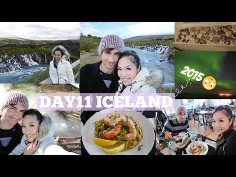 DAY 11 ICELAND: WE SAW THE AURORA!!! | Angelbirdbb