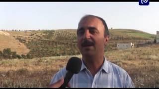 الطرق الزراعية في بلدة كفر خل - محافظة إربد