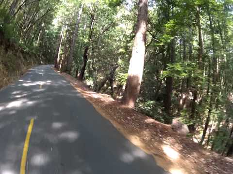 Shadow Cyclist: Kings Mountain Road, Woodside