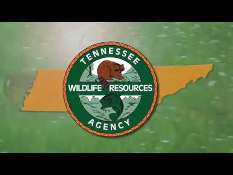 Keep Tennessee CWD Free!