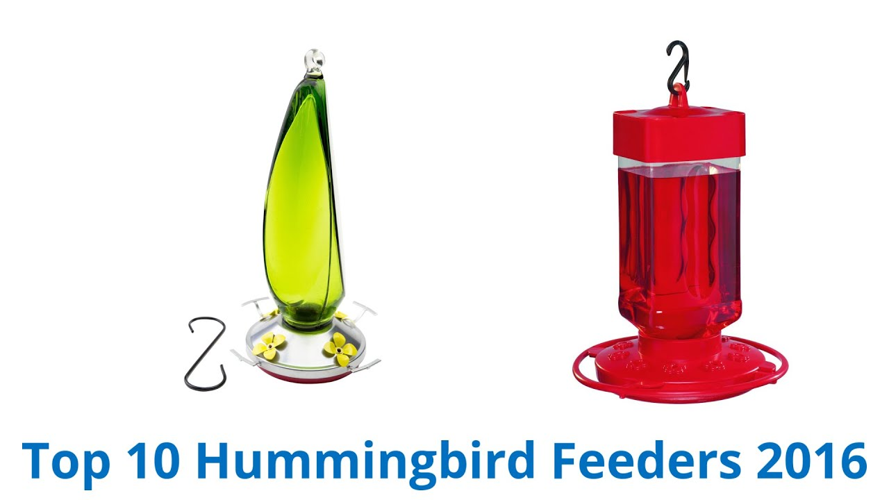 gallon feeder manufacturer for from nice image full hummingbird the superb one feeders bird
