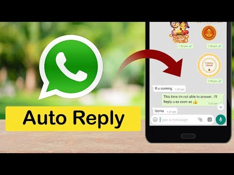 How To Enable Auto Reply To WhatsApp Messages ?