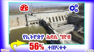 VOA :Grand Ethiopian Renaissance Dam Progress 56%