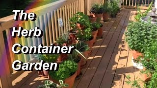 More Tips for Your Herb Container Garden! Basil, Oregano, Mint, Cilantro, Tarragon