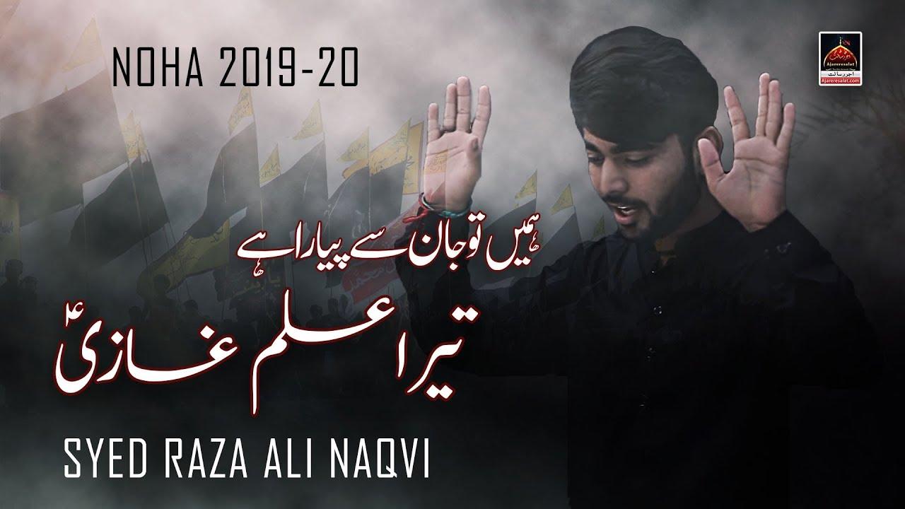 Noha - Hume Tu Jaan Say Pyara Hai Tera Alam Ghazi - Syed Raza Ali Naqvi -  2019