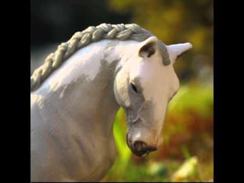 pferde love