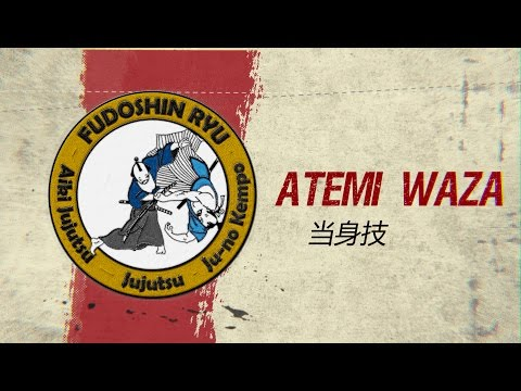 Atemi Waza Self-defense Explained - Fudoshinryu Aiki Jujutsu