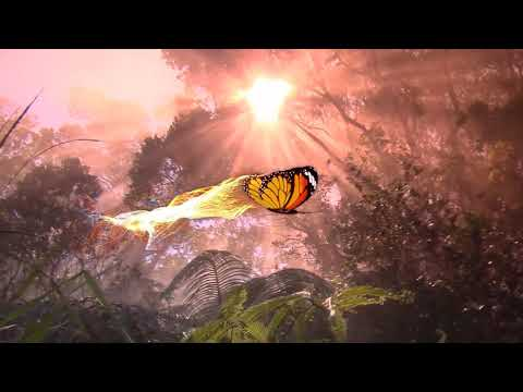 "Peaceful Music, Relaxing Music, Instrumentatl Music ""The Magical Butterfly"" by Tim Janis"