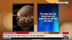 Pest Control Services & Bed Bug Removal in Taylor, MI 313-908-2667