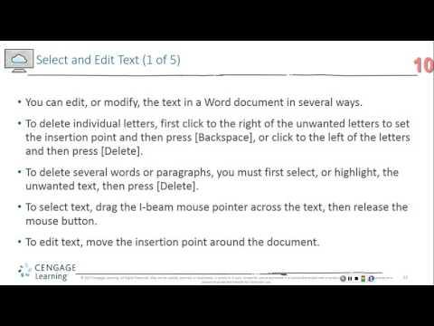 Microsoft Word Module 4