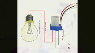 видео Устройство дачного участка: освещение и зеленая зона