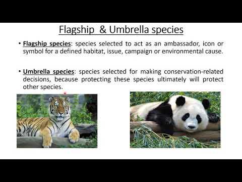 Threats To Biodiversity | Endangered Species | IUCN RED LIST