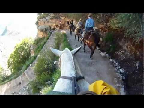 Grand Canyon Mule Trip to Phantom Ranch 5/25-26/2011