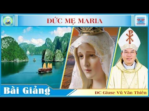 Bài giảng Lễ Chung Về Đức Mẹ - Đức cha Giuse Vũ Văn Thiên