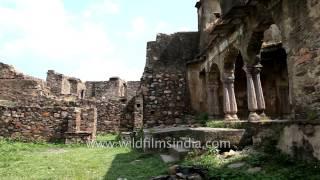 Ranthambhore Fort - Rajasthan
