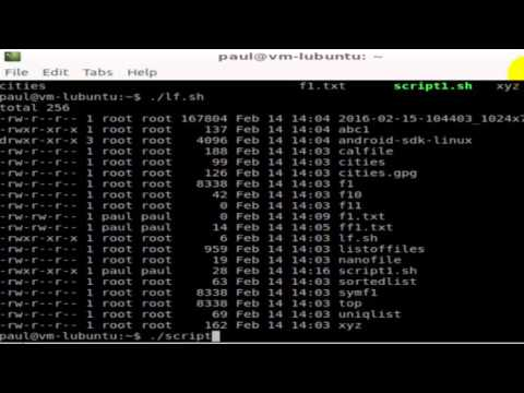 How to execute a file in Linux