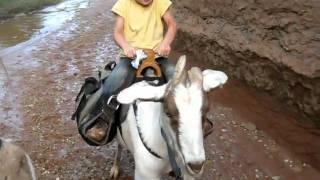 Girl Riding Pack Goat.AVI