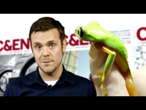 Fighting a Killer Frog Fungus - Speaking of Chemistry Ep.9