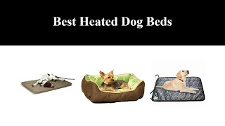 Best Heated Dog Beds in 2020