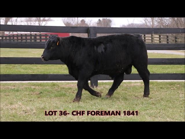 Cardinal Hill Farms Lot 36