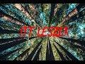 LoNe WoLF - ITT LESZEK (Official Music Video)