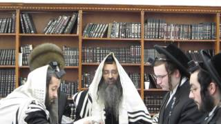 Admor Beis Shmiel Zvi Spinka Reading Megilah (book of esther) Purim 2013