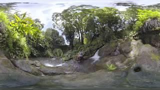 Chasing Waterfalls on Maui - 360 Video (#LetHawaiiHappen with Austin Kino) thumbnail