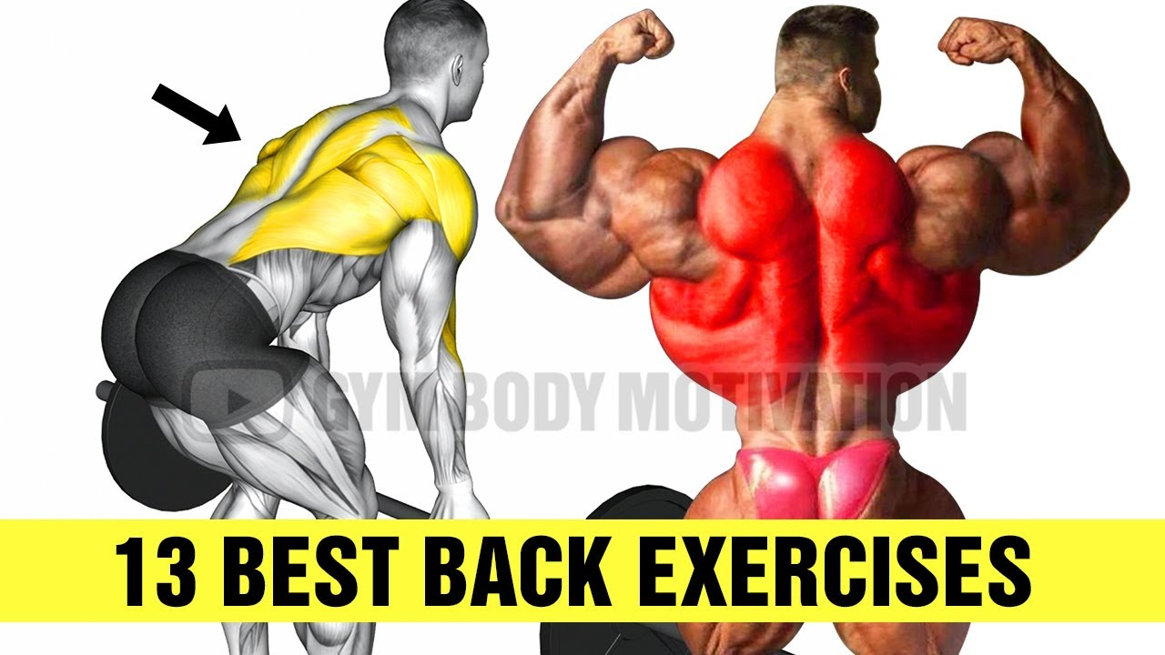13 Exercises To Build A Big Back - Gym Body Motivation