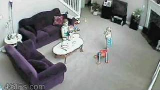 Repeat youtube video Cat attacks babysitter 4GIFs.com