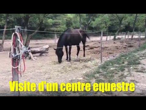 sem38   18 sept   Visite d'un centre equestre