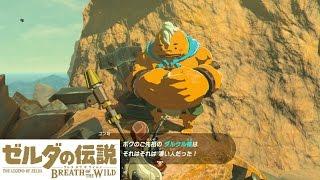 Nintendo Switch/Wii U用ソフト『ゼルダの伝説 ブレス オブ ザ ワイルド...
