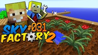Magical Crops Einstieg! - Minecraft Sky Factory 2 Folge #31