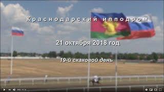 Видео 19 скаковой день   21.10.2018г. Краснодарский ипподром