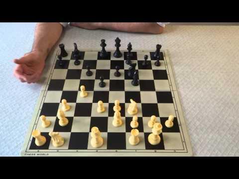 Nimzo - Larsen Attack (Chess Opening)