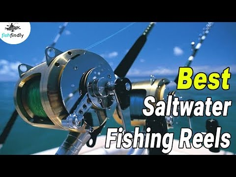 Best Saltwater Fishing Reels In 2020 – Find Out The Best Saltwater Reels!