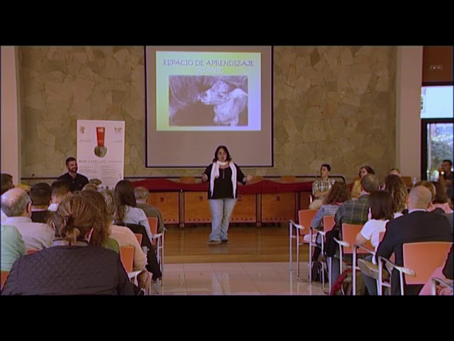 ALEGATOX 2018 | ESCUELA CANARIA EN EDADES INFANTILES
