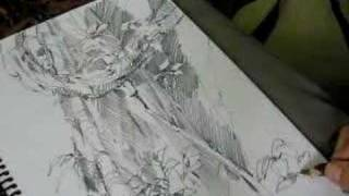 Drawing A Rainforest Tree-part3